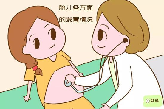 胎儿是否入盆锛�胎位是否正锛�胎儿各方面的发育情况