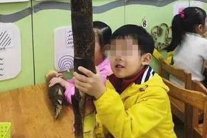幼儿园要求带春笋孩子带了这个 同学:算我输