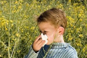 春季花粉过敏高发 防护知识了解一下