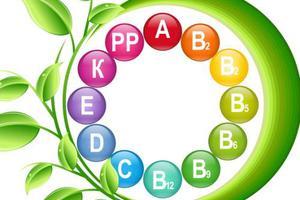 五种营养素 半数幼儿缺