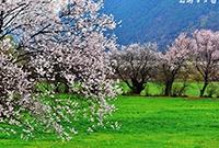 日本国会批准日印物资劳务互供协定