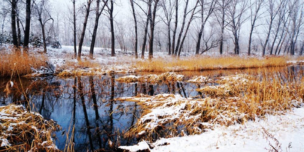 实拍雪后仙境之地