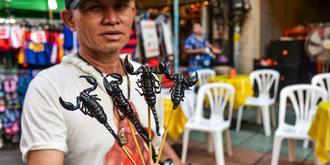 王俊凱pick的曼谷夜市如何