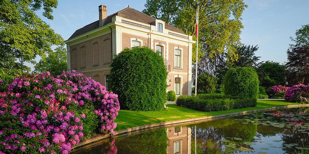 荷兰处处花开