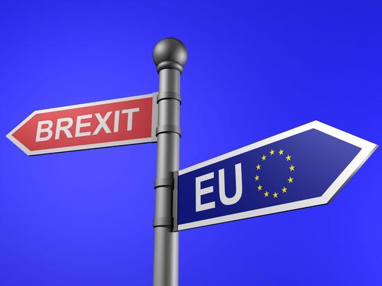 英民意调查:42%受访者支持第二次脱欧公投