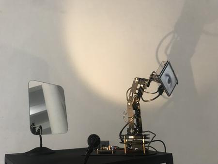 邱宇《機械控制的眼睛看到鏡子中機械控制的眼睛在看我》 機械手臂,2019