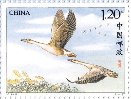寓意美好的《大雁》特种邮票七夕发行