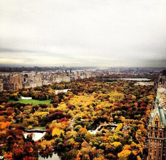 """2013年11月,梅拉尼娅从相同的窗口拍到这张照片,名为""""美丽的秋色""""。"""
