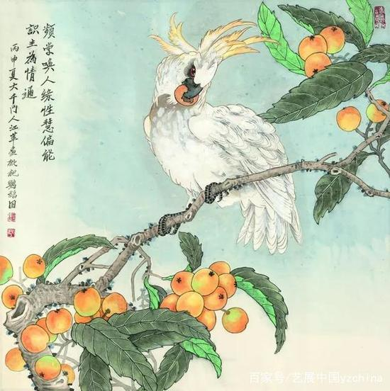 江蘋作品《鸚鵡圖》
