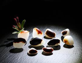 第十七届中国当代玉雕大师籽料作品拍卖会