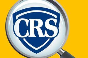 CRS下的艺术品投资