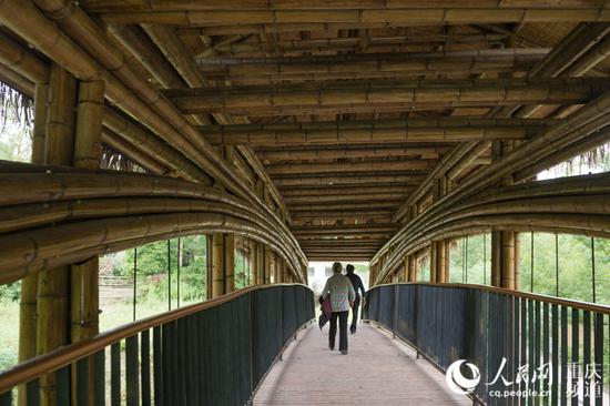 """716根毛竹建桥 重庆这座桥拿下建造领域""""奥斯卡"""""""