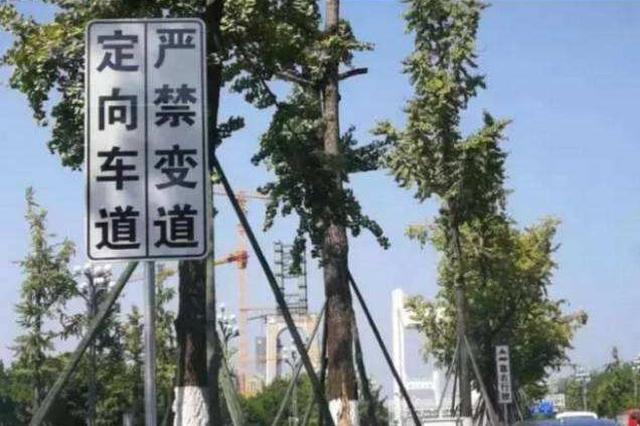 好消息!重庆定向车道增至15条 高峰时段提速15%