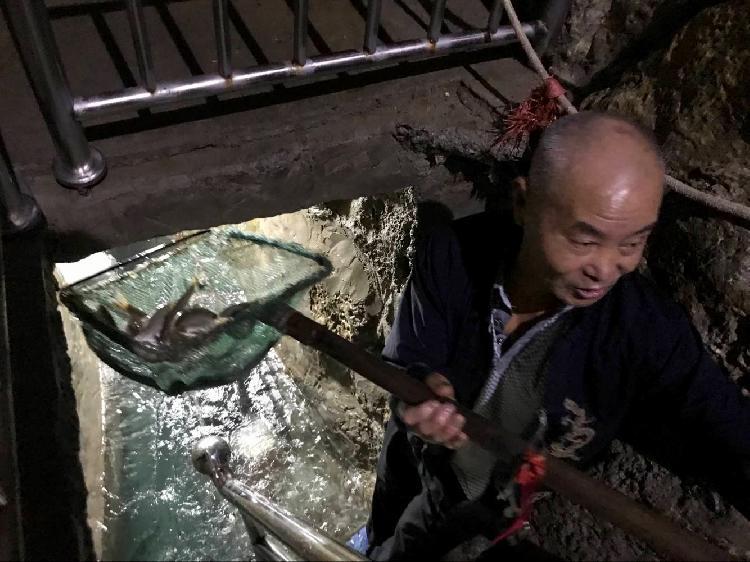 中国历史著名法治人物