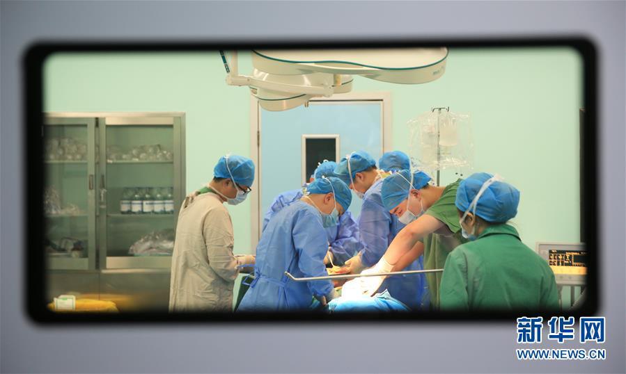 中国将与世界卫生组织分享新型冠状病毒基因序列信息
