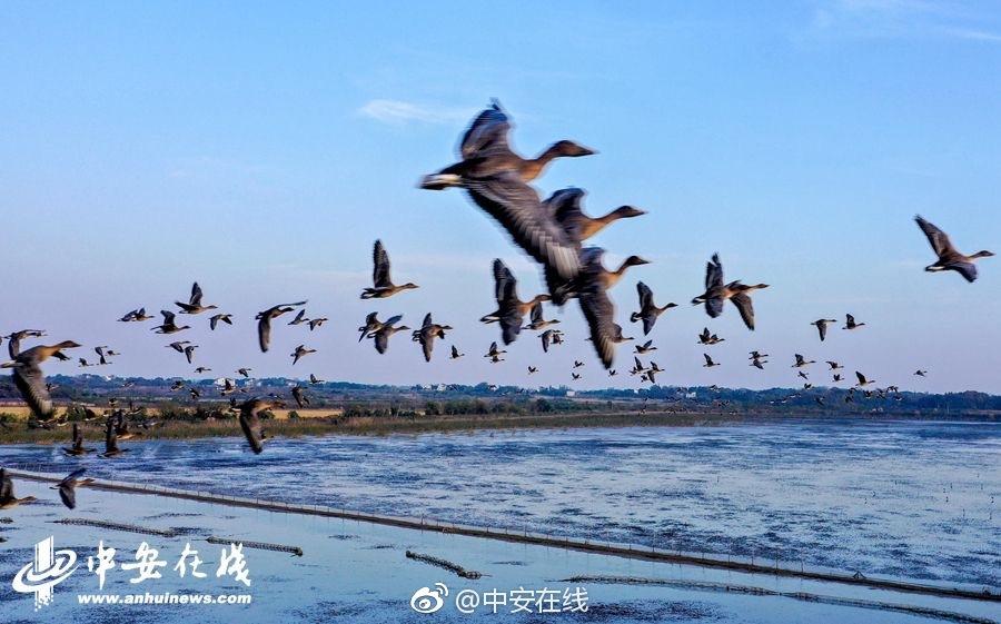 秦光荣1600平大院曝光 亿元贪官家中茅台倒不尽