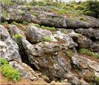 长江西陵峡岸边发现石林
