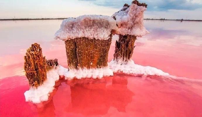 梦幻般的粉色盐湖 Koyashskoye盐湖