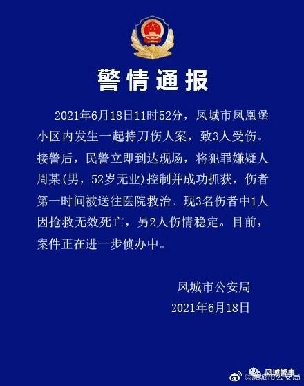 辽宁凤城一小区发生持刀伤人案 致1人死亡2人受伤