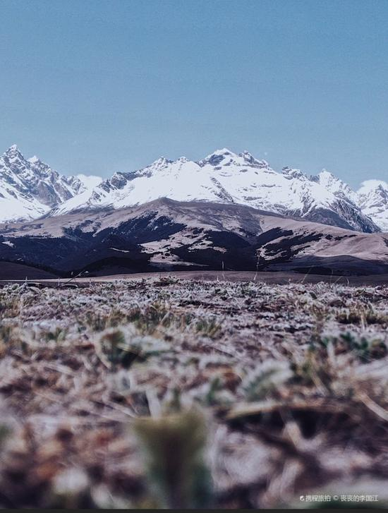 海拔4000米之上,理塘的雪山与草原。