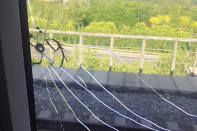 小伙彈弓打鳥擊破高鐵玻璃被行拘