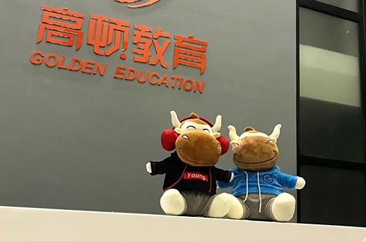 高顿教育:薪税师在上海怎么考?考试内容一览
