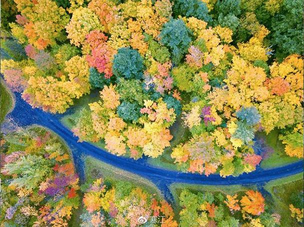 秋天来美国密歇根看什么?