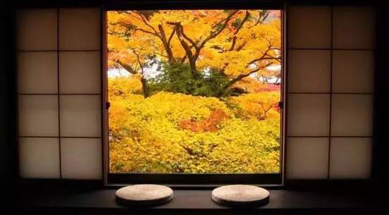 6家日本最美的�p�骶频� 睡在秋天的�t�~下
