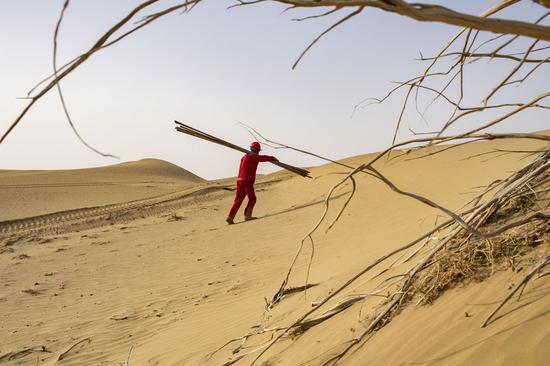 A worker of the geophysical survey team walks in the Taklimakan Desert, northwest China's Xinjiang Uygur Autonomous Region, Feb. 24, 2021. (Xinhua/Hu Huhu)