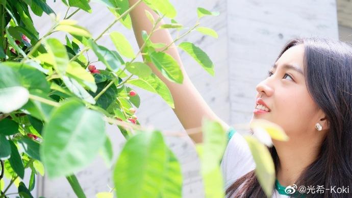 木村光希阳光下采果子很清新 绿意盈盈人比花娇