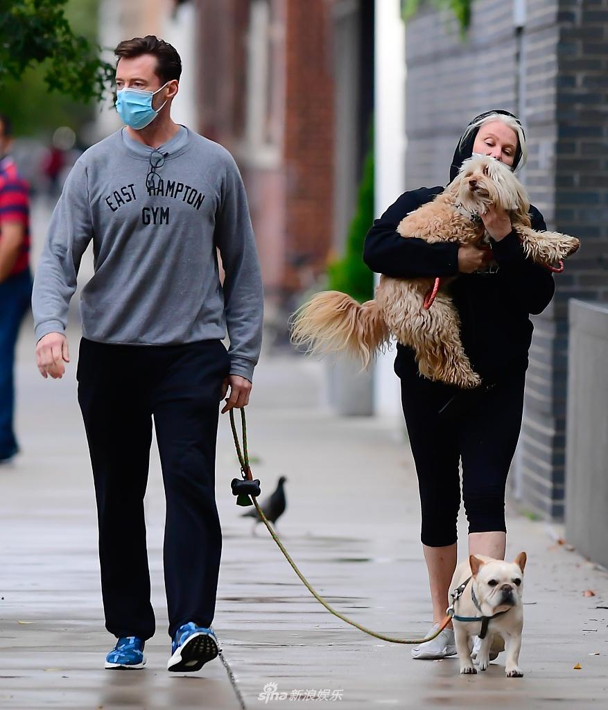 组图:休·杰克曼和妻子遛狗 两人甜蜜同行搂腰热聊
