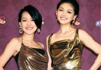 刚出道时,小S说姐妹俩总是被骂。图/视觉中国