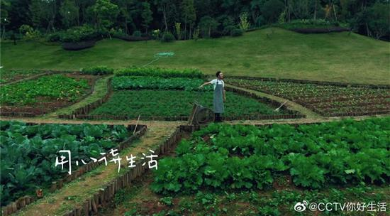 體驗農耕生活