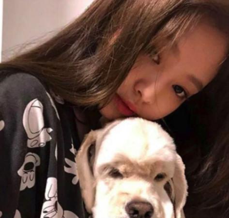 Jennie本身养的狗就叫做Kai