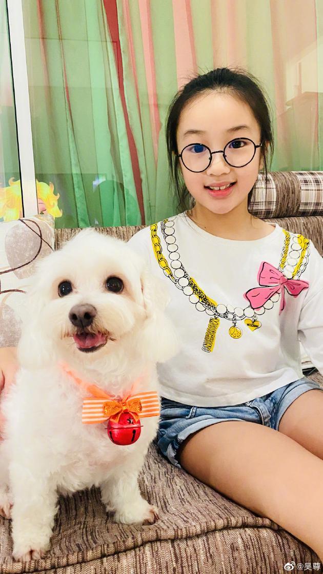 吴尊透露女儿不愿养狗原因:舍不得看到它们离开