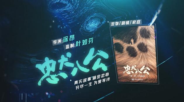 中国版《忠犬八公》
