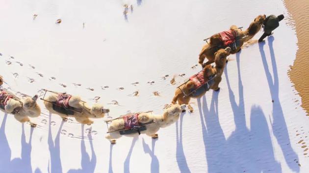 宁夏,腾格里沙漠的雪景