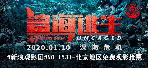电影《鲨海逃生》海报
