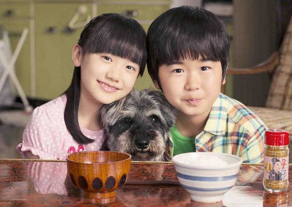 铃木福(右)是爆红童星,近日传出车祸消息震惊粉丝