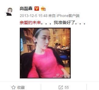 高磊鑫2013年微博