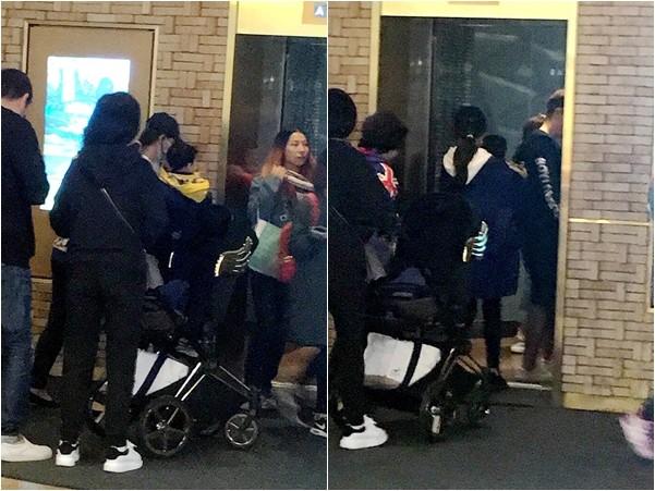 网友捕获野生Baby及儿子小海绵。