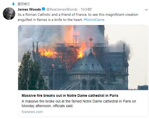 演员詹姆斯伍兹表达心痛之情