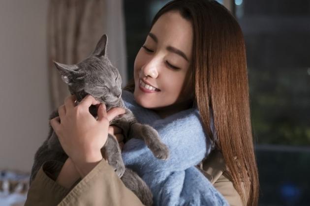电影《拥抱猫咪》剧照