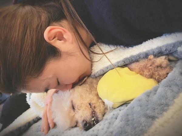 Selina愛犬去世