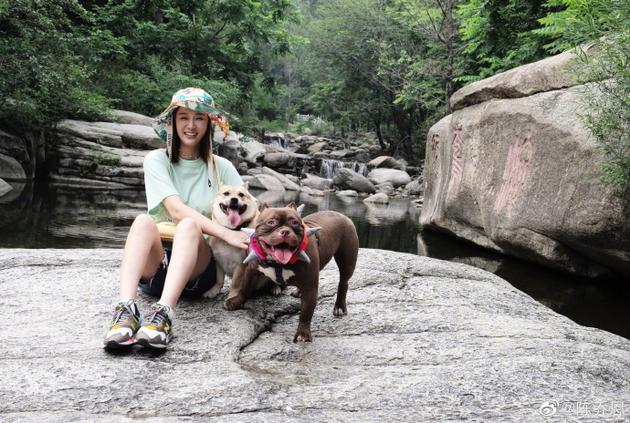 陈乔恩和狗狗