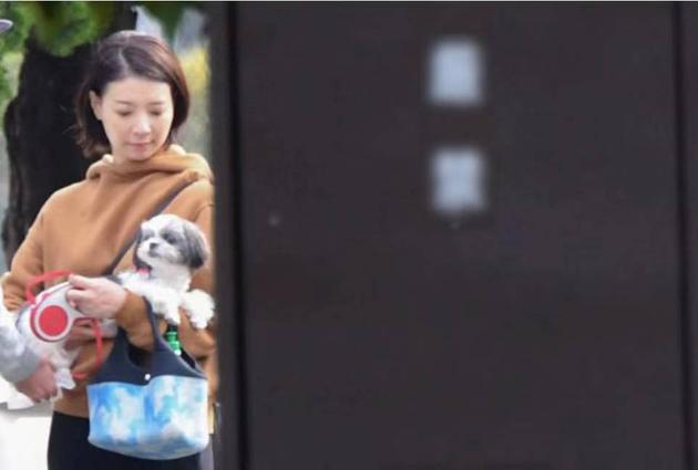 朝海光与坂本昌行的爱犬