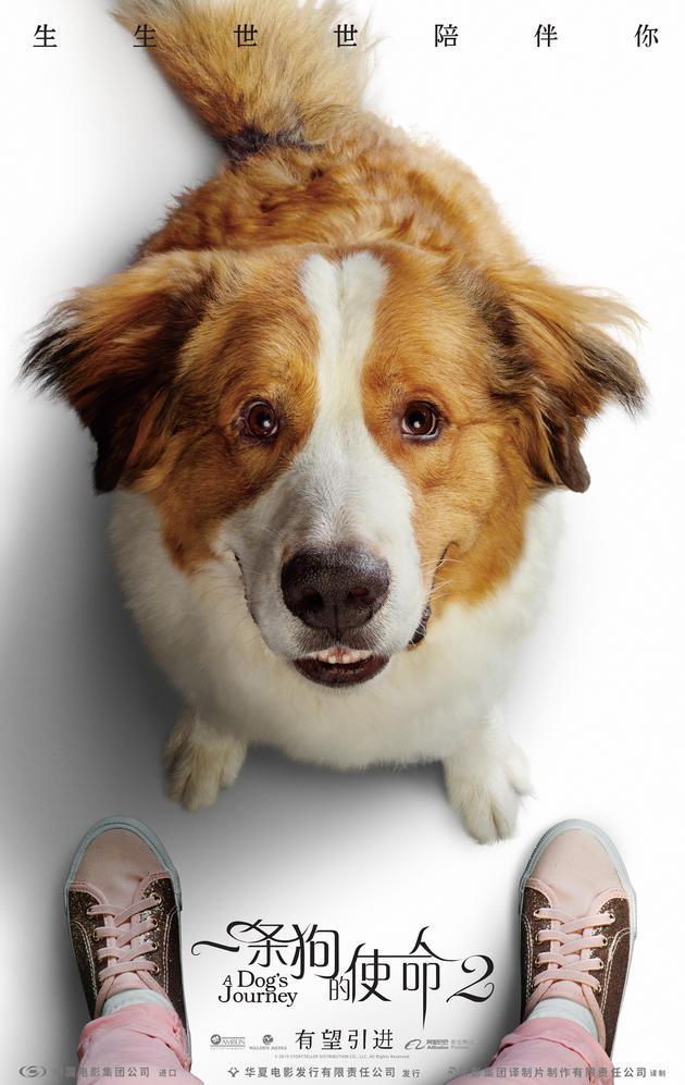 《一条狗的使命2》将于5月17日北美上映 内地有望引进
