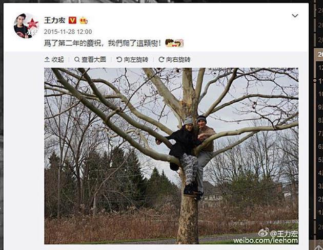 王力宏4年前庆祝结婚2周年就曾揪老婆爬树。