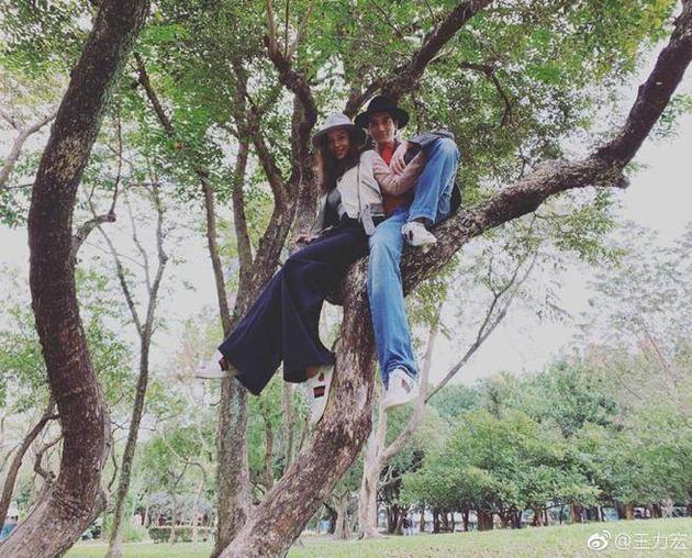 王力宏情人节爬树庆祝。