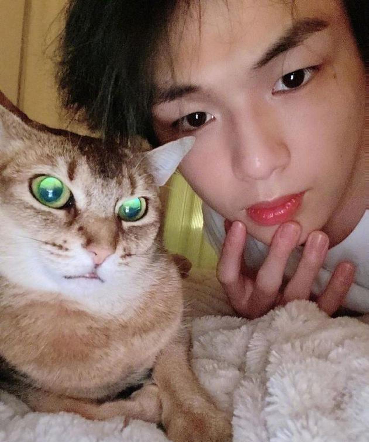 姜丹尼尔晒与猫咪同框呆萌